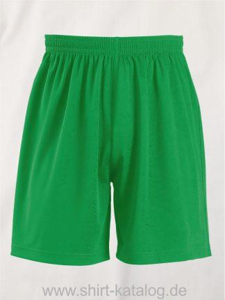 20071-Sols-Basic-Shorts-kelly-green