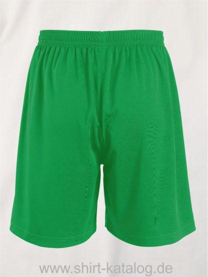 20071-Sols-Basic-Shorts-kelly-green-back-view
