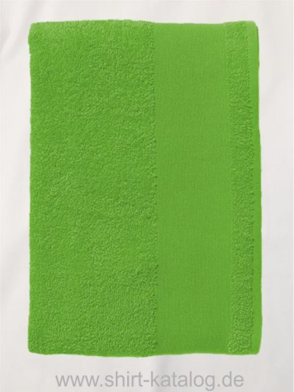 26661-Guest-Towel-Island-30-lime