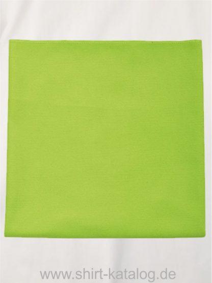 27189-Microfibre-Towel-Atoll-50-apple-green