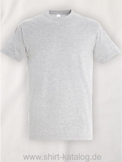 150-Sols-Regent-T-Shirt-Ash