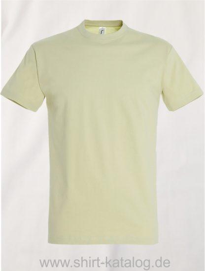 150-Sols-Regent-T-Shirt-Sage-Green